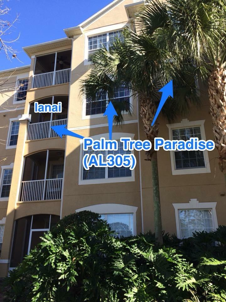 Exterior View of Palm Tree Paradise