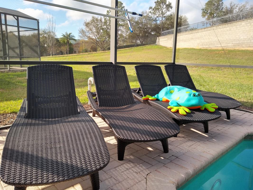 Sun on the pool chairs at 10:00am in February!  YES!!!